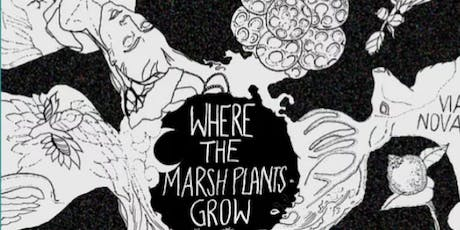 Where the Marsh Plants Grow: Workshop tickets