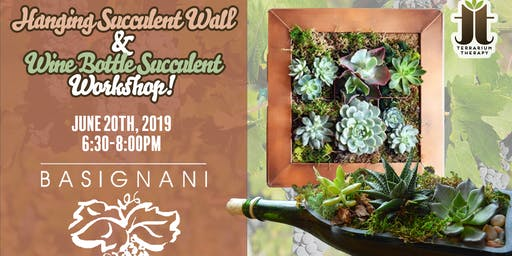 Hanging Vertical Succulent Wall - Basignani Winery
