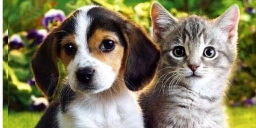 Introduction to Animal Communication Workshop - Learn to talk & listen to your pets!!!