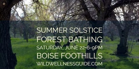 Twilight Solstice Forest Bathing tickets