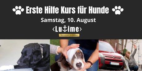 Erste Hilfe Kurs für Hunde in Ludwigshafen Tickets