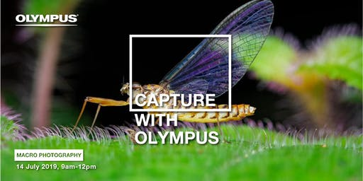 CAPTURE WITH OLYMPUS - MACRO PHOTOGRAPHY (JB)