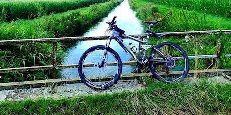 Formation de mécanique vélo, ajustement de vitesses billets