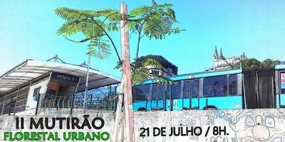 2º Mutirão Florestal Urbano - BRTPenha1