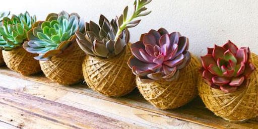 Succulent Kokedama Workshop