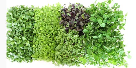 The Complete Microgreens Workshop: Learn To Grow & Cook (Veg) tickets