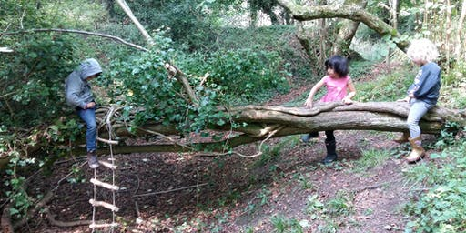 Earthwise: Summer Forest Fun - Torhill Wood