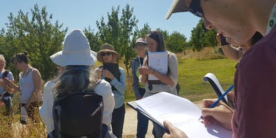 Wildlife Exchange Session - 'Running a Bioblitz at Ness Botanic Gardens\