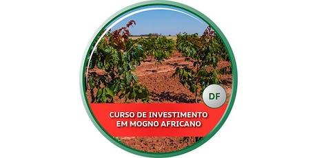 Curso de Investimento em Mogno Africano - DF bilhetes
