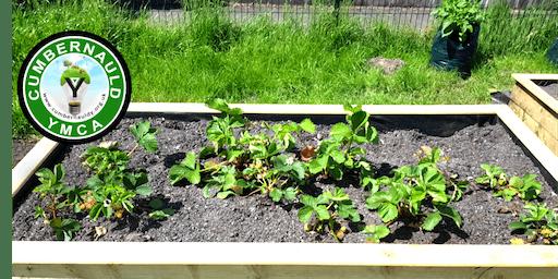 Community Food Garden Open Day