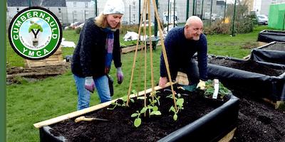 YMCA Community Food Garden Growing Session
