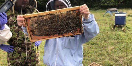 Bee Keeping Experience Day - For Veterans & Emergency Services tickets
