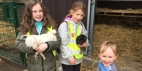 St. Anne's City Farm - Family Volunteer Day tickets