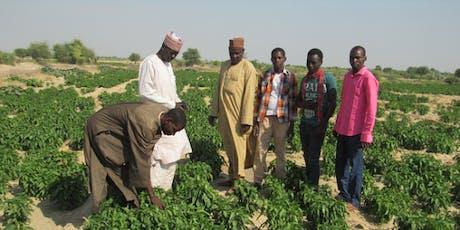 Relancer le conseil agricole en Afrique subsaharienne ? billets