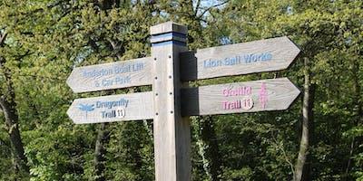 Saltscape Walk