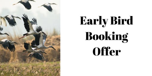 Early bird booking discount Meridians, Chakras and Auras