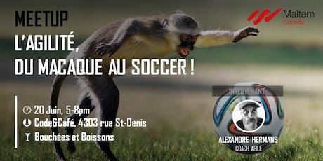 L'Agilité, du macaque au soccer ! #Agile billets