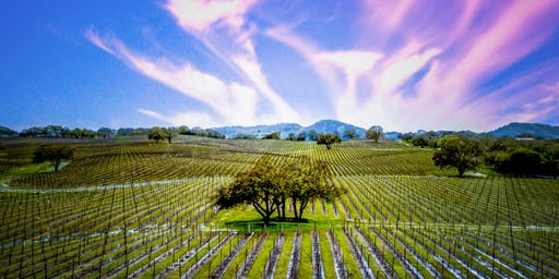 The Sonoma Community Resilience Training: Continuing Education Credits