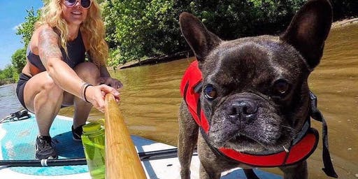 Flat Tide SUP with your PUP Event