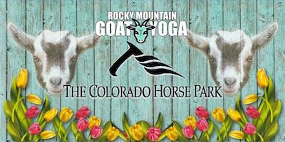 Goat Yoga - July 12th (Colorado Horse Park)