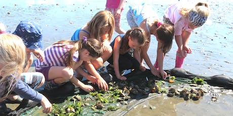 Aug 6-9: Science Summer Camp, Ages 6 to 8 tickets