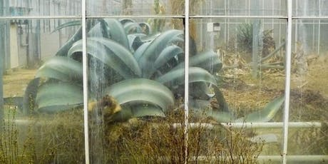 Labirinto Botanico biglietti
