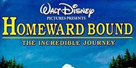 Homeward Bound- Friday Night Flix at Lone Star Court