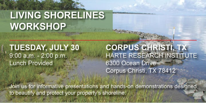 Texas Living Shoreline Workshops @ Harte Research Institute | Corpus Christi | Texas | United States