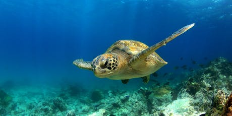 CAA Exclusive Tour: Gorgeous Galapagos tickets