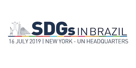 SDGs in Brazil 2019 tickets