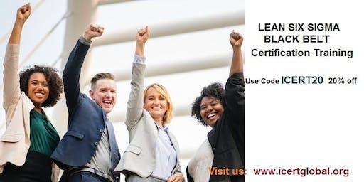 Lean Six Sigma Black Belt (LSSBB) Certification Training in Fredericksburg, TX