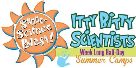 July 15-19, Mad Scientist Chemistry Itty Bitty Scientist Weeklong Half-Day Camp tickets