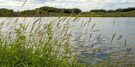 Alberta Wetland Field Guide - Lethbridge Stakeholder Consultation tickets