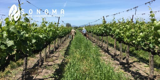 Save the Date! Demo Workshop II: Tillage & Compost in the Vineyard