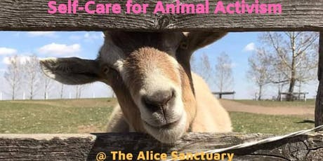 The Alice Sanctuary Self-Care for Animal Activism Workshop tickets