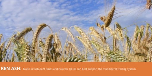 Trade in turbulent times and how the OECD can best support the multilateral trading system