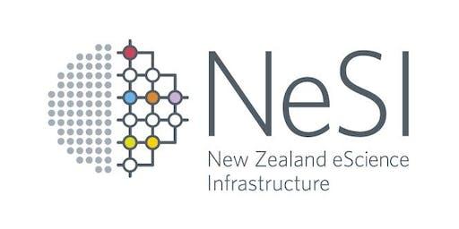 Python Code Optimisation on NeSI