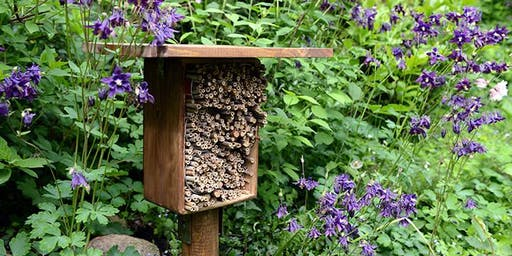 Build Your Own Backyard Bee Hotel