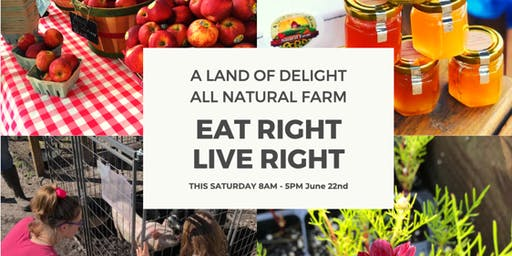 Experience An Epic Time With Family | A Land Of Deligh Natural Organic Farm