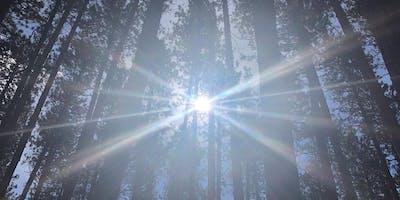 Press Pause: Breath + Meditation Hike