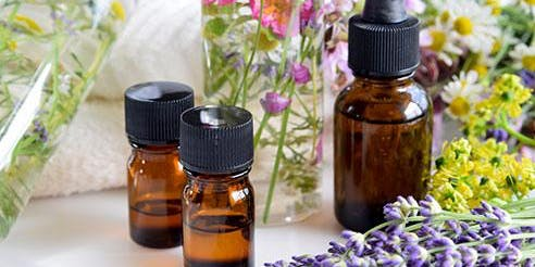 What's the fuss all about? Essential Oil Basics
