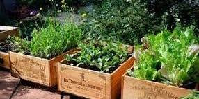 Gardening in small spaces FREE! Sustainable Living Workshop