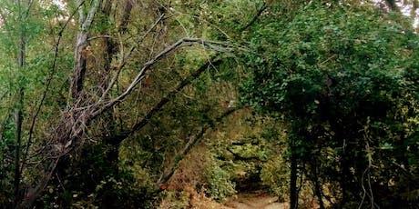 Wild Walk: Nocturnal Neighbors tickets