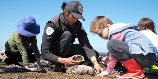 Junior Rangers Beachcombing - Port Phillip Heads MNP (Point Lonsdale)