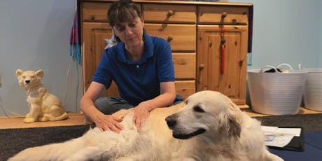 Massage for Dogs tickets