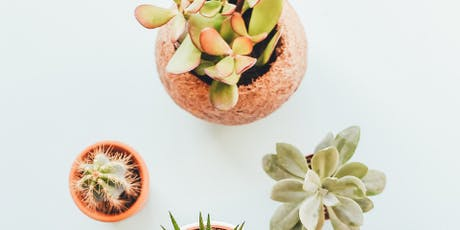 Create, Make and Take your very own  Succulent Bowl - Workshop tickets