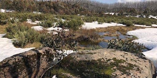 Junior Rangers Winter Wonders of Mt Donna Buang -Yarra Ranges National Park