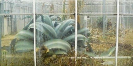 Labirinto Botanico @Giardino Ventura