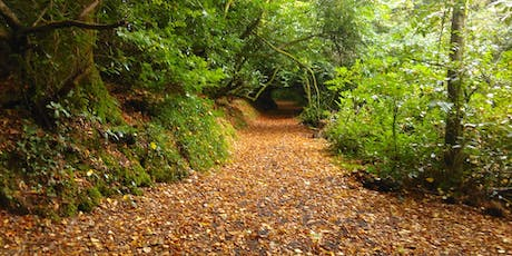 A  beautiful walk with Trees, Caves and Castles Tel. 0872172937 tickets