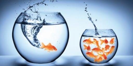 Inside Out- An Alternative View- Unlock your Commercial Potential - Chester